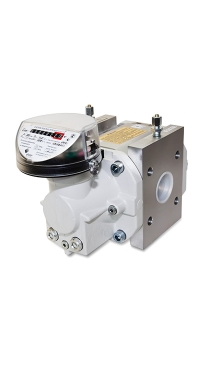 Счетчик газа RVG G160